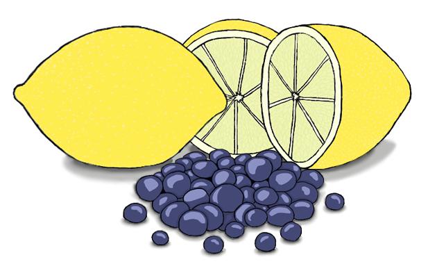 citroen maanzaadcake