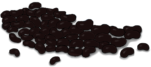 beans-plant-eiwit